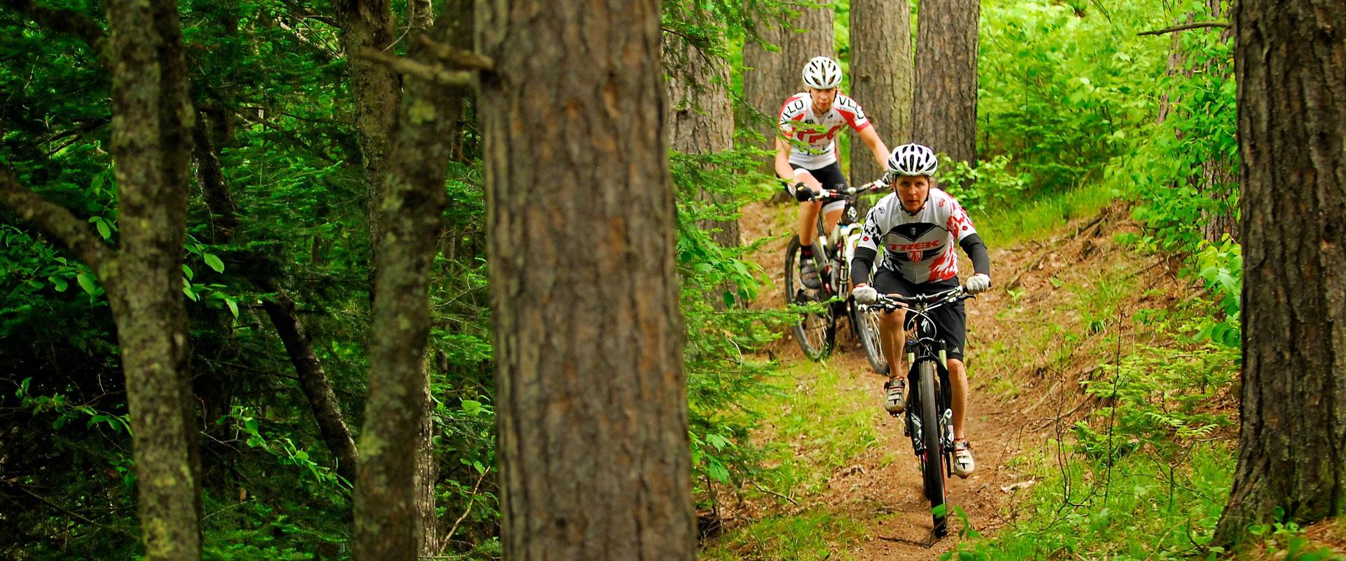 chequamegon area mountain bike association page 7 big woods